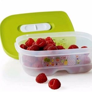 Tupperware Fridgesmart Minis Set of 2